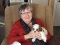 Johnston Donna  February 15 1943 to August 29 2018 avis de deces  NecroCanada
