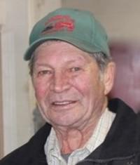 Doug Fawcett  1937  2018 (age 80) avis de deces  NecroCanada
