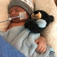 Hudson Joseph Brown  November 15 2018  November 21 2018 avis de deces  NecroCanada