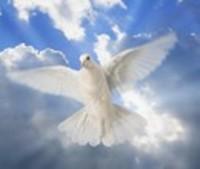 Carole Annettee Martin Kohr  August 5 1942  December 27 2018 (age 76) avis de deces  NecroCanada