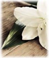 BALESTRA Elisa  2019 avis de deces  NecroCanada