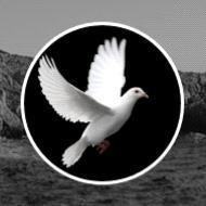 Justine Cadeau  2019 avis de deces  NecroCanada