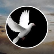 Thelma Noronha  2019 avis de deces  NecroCanada