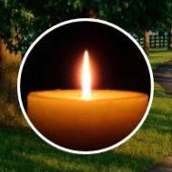 William Alvis Alexander  2019 avis de deces  NecroCanada