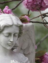 Alberta  Strauss avis de deces  NecroCanada