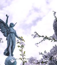 Grace Tai-Hua Ng 吳 薛台華  Monday October 7th 2019 avis de deces  NecroCanada