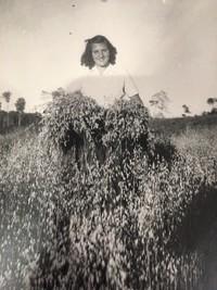 Dina Woodward  February 15 1925  February 29 2020 (age 95) avis de deces  NecroCanada
