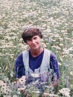 Anne-Marie Mulder Breen  November 25 1945  July 8 2020 (age 74) avis de deces  NecroCanada