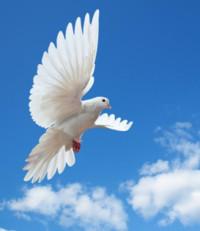 Therese Lavoie  2020 avis de deces  NecroCanada