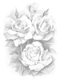 Leona Halter  December 9 1935  January 15 2021 (age 85) avis de deces  NecroCanada