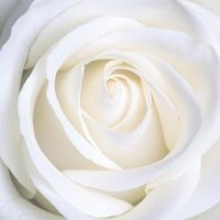 Rose Marie Gauthier  19562021 avis de deces  NecroCanada