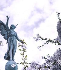 Elvira Riggio  Tuesday July 6th 2021 avis de deces  NecroCanada
