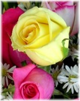 Anne Kozakowski Katchur  May 7 1930  November 20 2017 (age 87)
