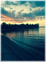 Judith Refvik Mitchell  January 2 1953  November 22 2017 (age 64)