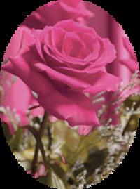Anita Pearl Carter Isbister  1927  2018 avis de deces  NecroCanada