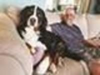 Stanley Wayne Johnsen  2018 avis de deces  NecroCanada