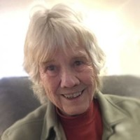TOWNSEND Darlene  — avis de deces  NecroCanada
