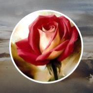 Bibi Alima Brooker  2019 avis de deces  NecroCanada