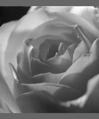 Shirley Shirl Christine Hynes nee Reid  September 24 1950 to December 18 2019 avis de deces  NecroCanada