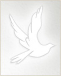Mavis Weatherhead  1936  2019 avis de deces  NecroCanada