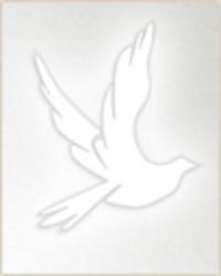 Pat Powell  1947  2019 avis de deces  NecroCanada