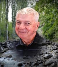 Paul etienne Arsenault  08 mai 1941 – 15 novembre 2020